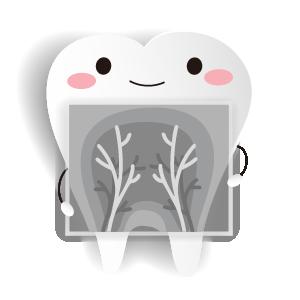 เอ็กซเรย์ฟัน